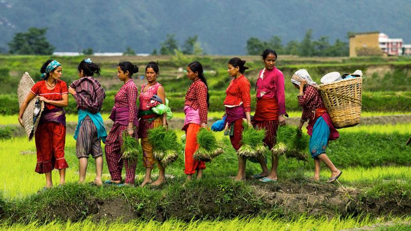 Pokhara  Kathmandu tour 5N/ 6D