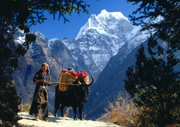 Pokhara Tour Package 4N 5D